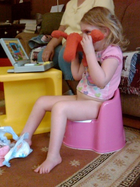 Little girl potty chairs